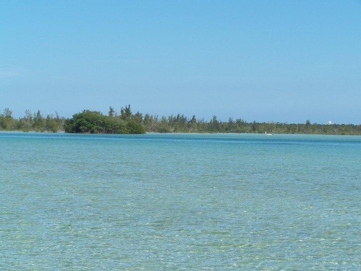 Andros Flats Bahamas