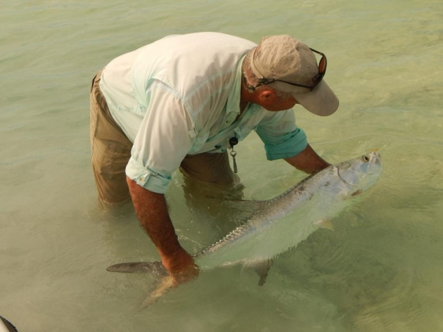 Baby Tarpon Release - Andros Island