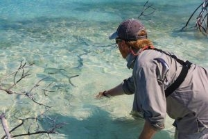 Permit Release Andros Island